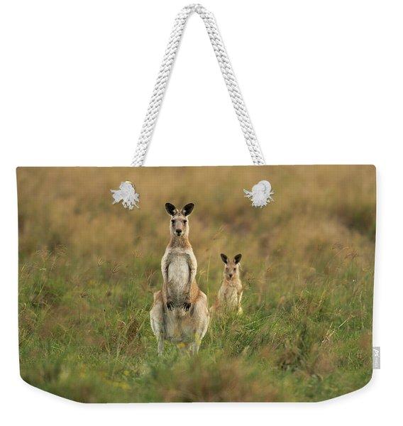 Kangaroos In The Countryside Weekender Tote Bag
