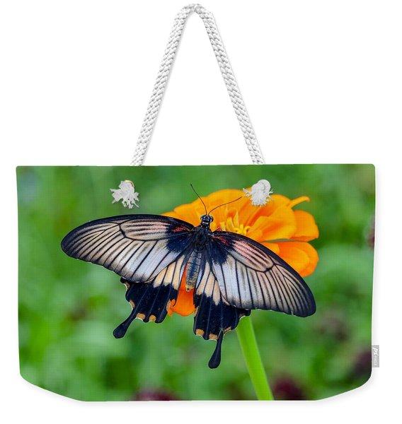 Kite Swallowtail  Weekender Tote Bag