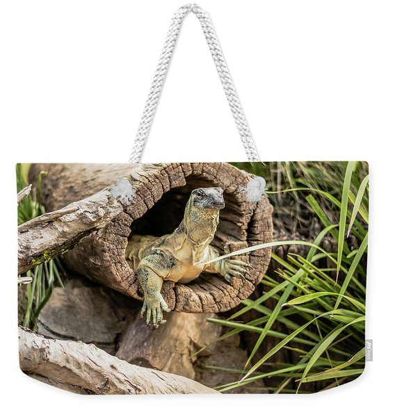 Lace Monitor During The Day. Weekender Tote Bag
