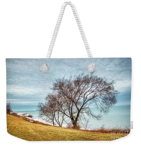 Lakeshore Lonely Tree Weekender Tote Bag