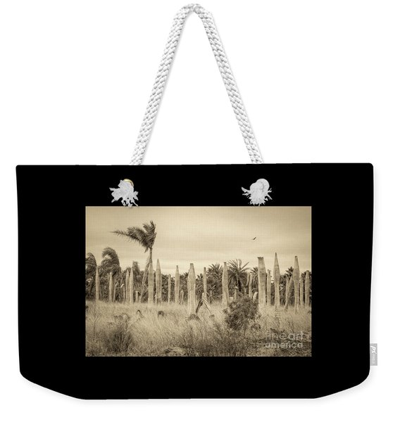Land Time Forgot Weekender Tote Bag