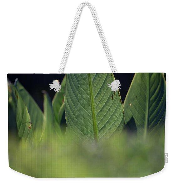 Large Dark Green Leaves Weekender Tote Bag