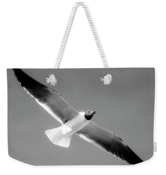 Laughing Seagull Weekender Tote Bag