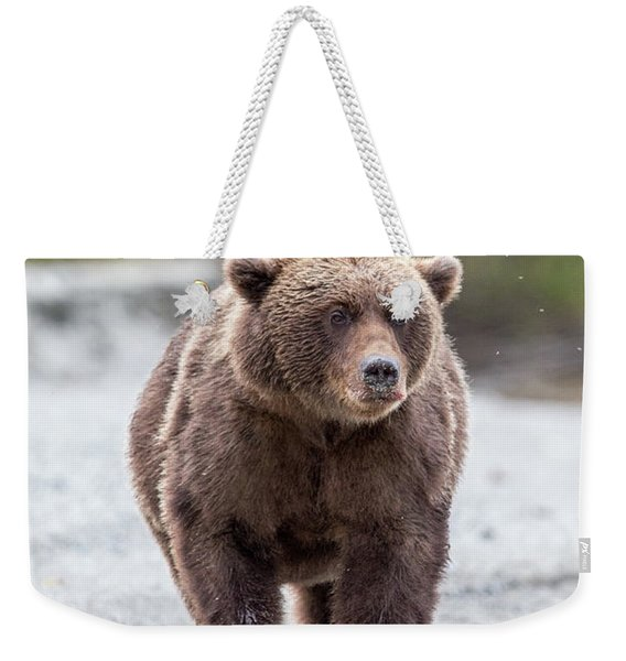 LC Weekender Tote Bag