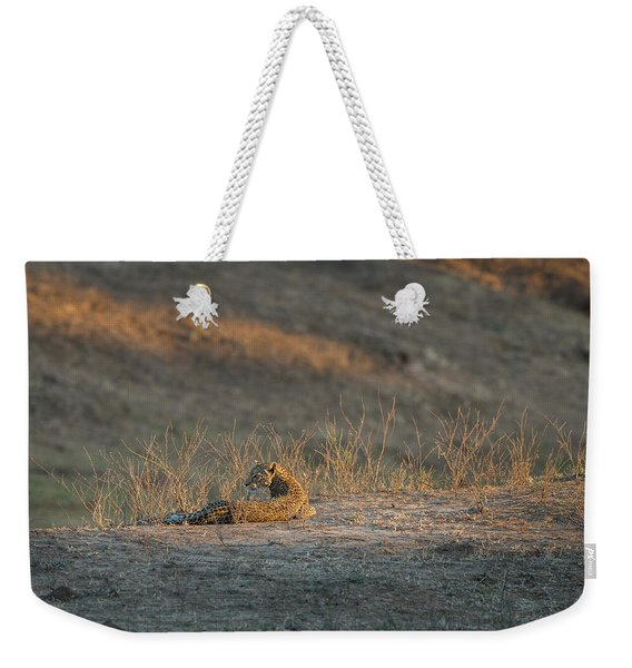 Weekender Tote Bag featuring the photograph Lc10 by Joshua Able's Wildlife
