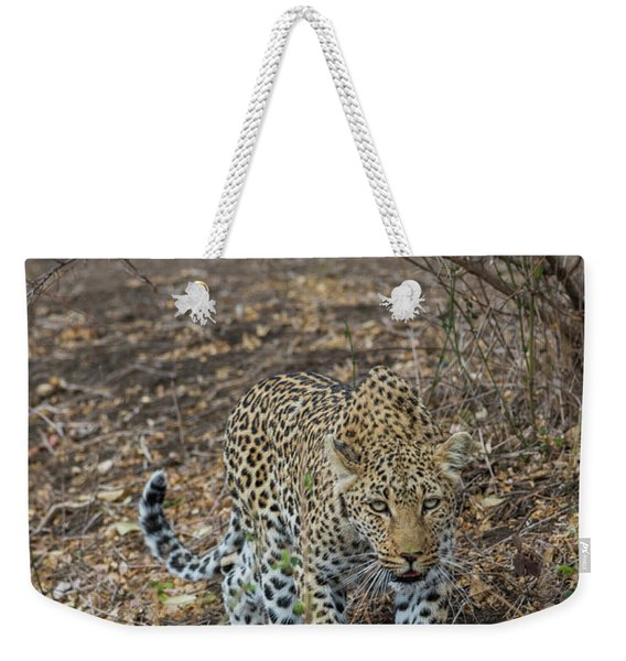 Weekender Tote Bag featuring the photograph LC2 by Joshua Able's Wildlife