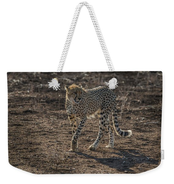 Weekender Tote Bag featuring the photograph LC3 by Joshua Able's Wildlife