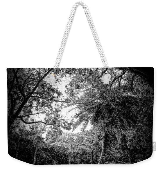 Let The Light In Weekender Tote Bag