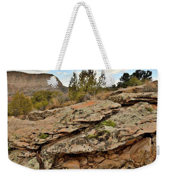 Lichen Covered Ledge In Colorado National Monument Weekender Tote Bag