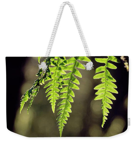 Weekender Tote Bag featuring the photograph Licorice Fern by Whitney Goodey