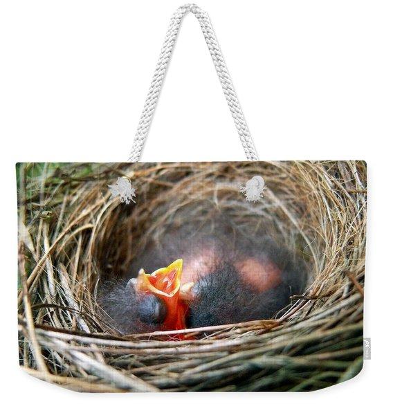 Life In The Nest Weekender Tote Bag