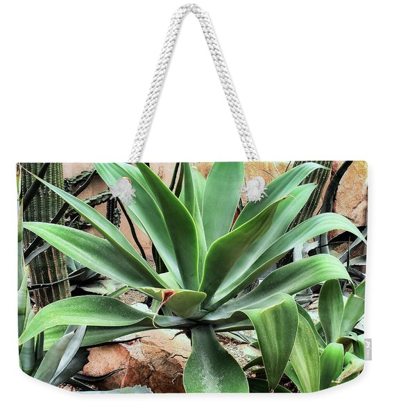 Lion's Tail Agave Weekender Tote Bag