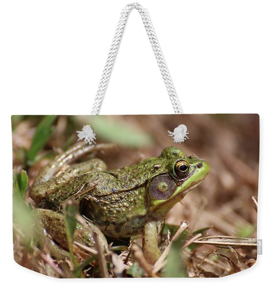 Weekender Tote Bag featuring the photograph Little Green Frog by William Selander