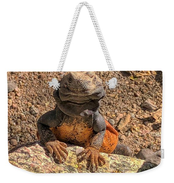 Lizard Portrait  Weekender Tote Bag