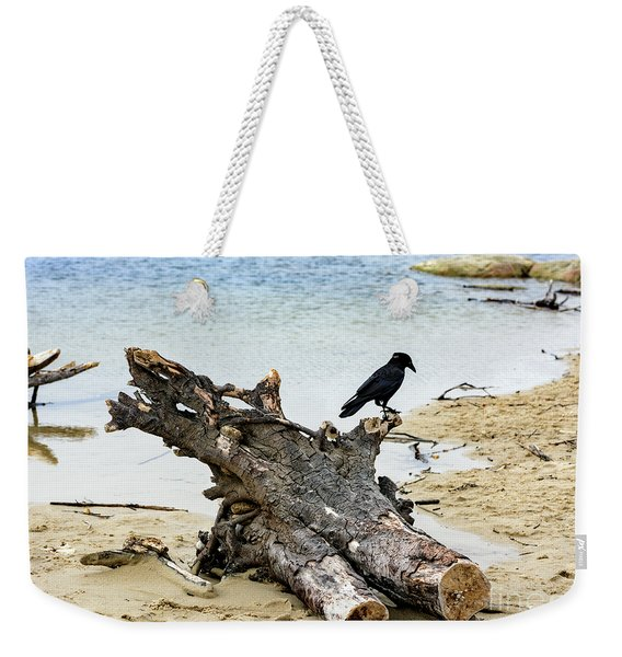 Lone Carmel Crow Atop Driftwood Weekender Tote Bag
