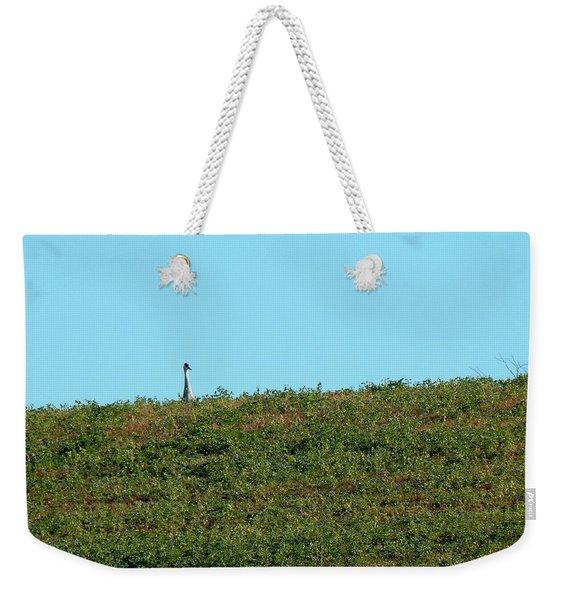 Lonely At The Top Weekender Tote Bag