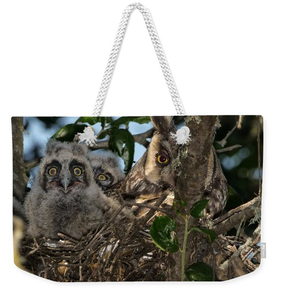 Long-eared Owl And Owlets Weekender Tote Bag