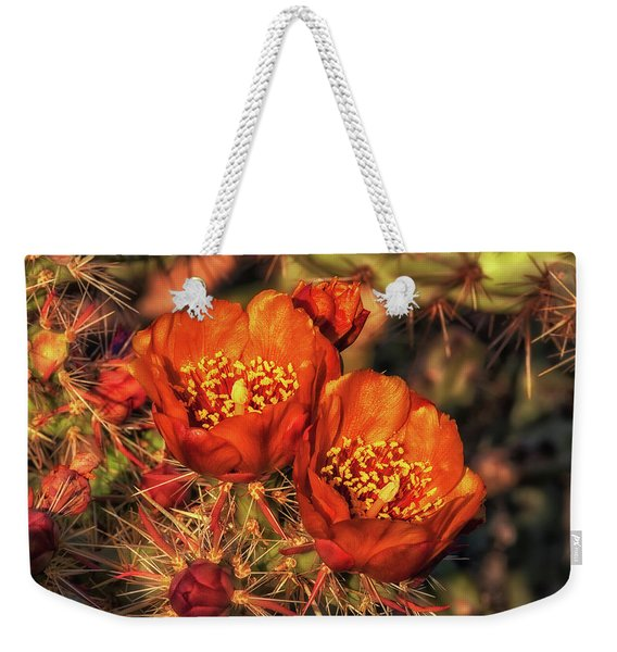 Look But Don't Touch Weekender Tote Bag