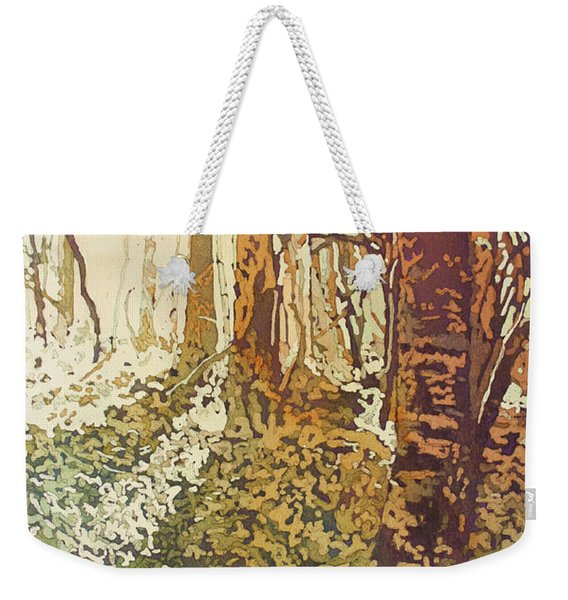 Looking Up Towards Home Weekender Tote Bag