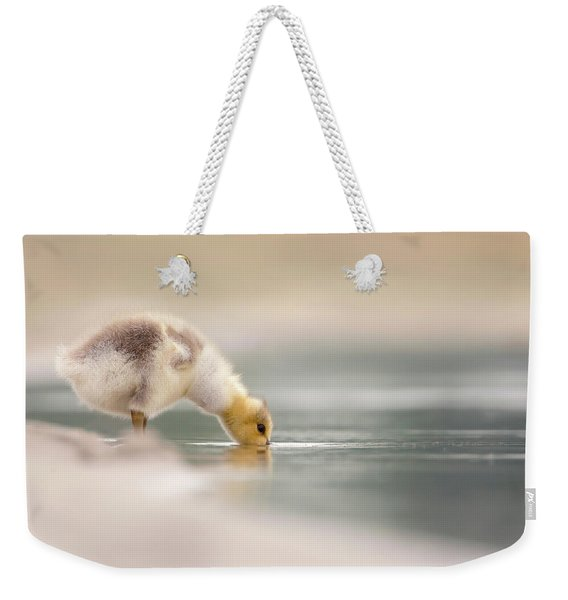Lost Something? - Drinking Gosling Weekender Tote Bag