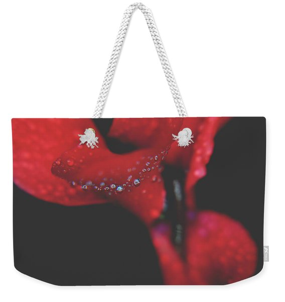 Love In Another Place And Time Weekender Tote Bag