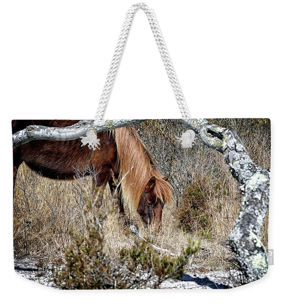 Weekender Tote Bag featuring the photograph Lunchtime For Assateague's Gokey Go Go Bones by Bill Swartwout Photography