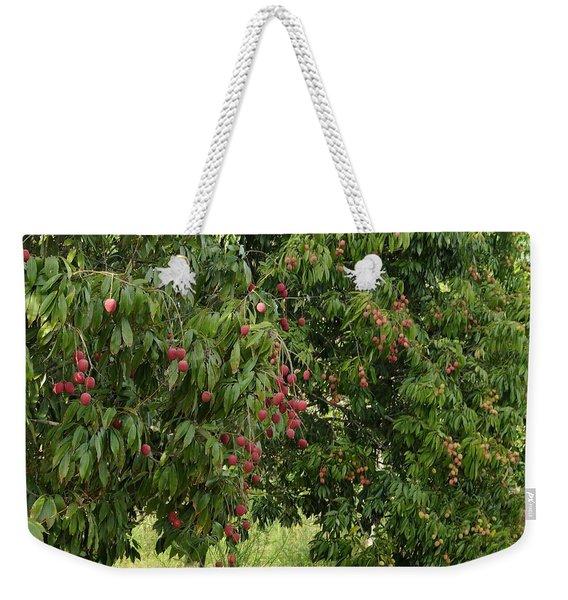 Lychee Tree With Fruit Weekender Tote Bag