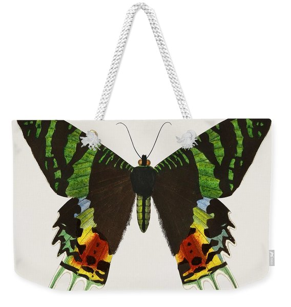 Madagascan Sunset Moth  Urania Riphaeus Illustrated By Charles Dessalines D' Orbigny  1806-1876  Weekender Tote Bag