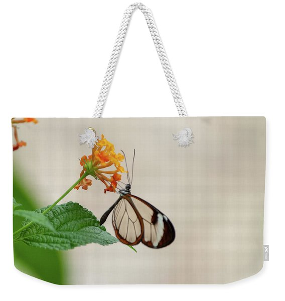 Weekender Tote Bag featuring the photograph Made Of Glass by Anjo Ten Kate