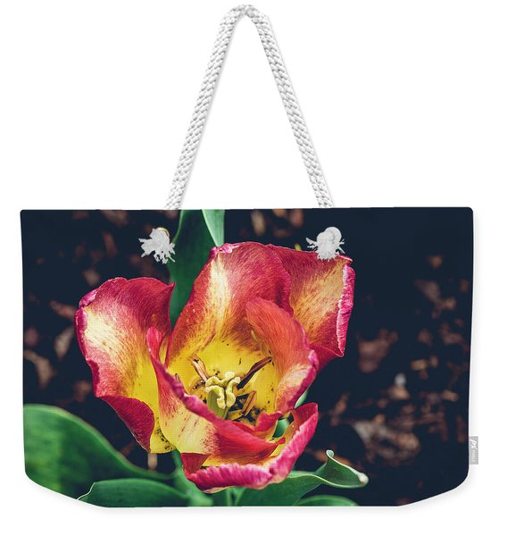 Magnificence Squared Weekender Tote Bag
