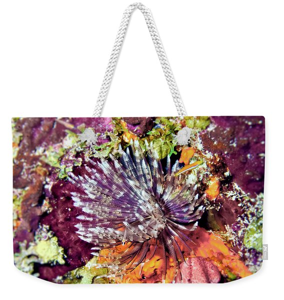Magnificent Feather Duster Weekender Tote Bag