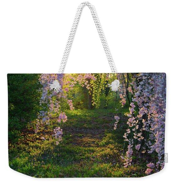 Magnolia Tree Sunset Weekender Tote Bag