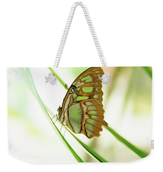 Malachites Butterfly Weekender Tote Bag