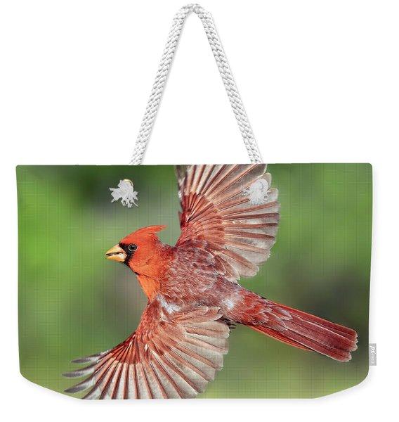 Male Cardinal In Flight Weekender Tote Bag