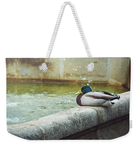 Mallard Resting On The Fountain Of The Fallen Angel In The Retiro Park - Madrid, Spain Weekender Tote Bag