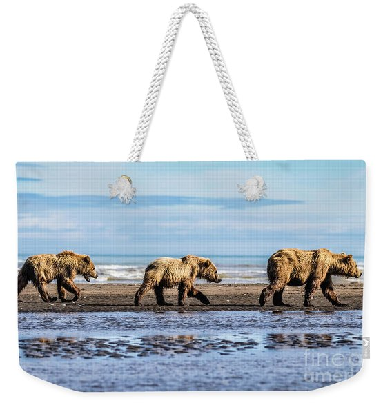 Mama Bear And Her Two Cubs On The Beach. Weekender Tote Bag