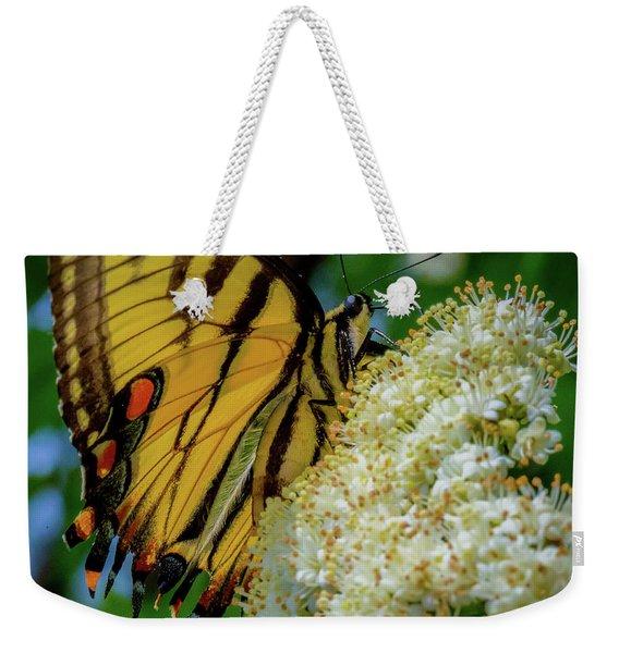 Manassas Butterfly Weekender Tote Bag
