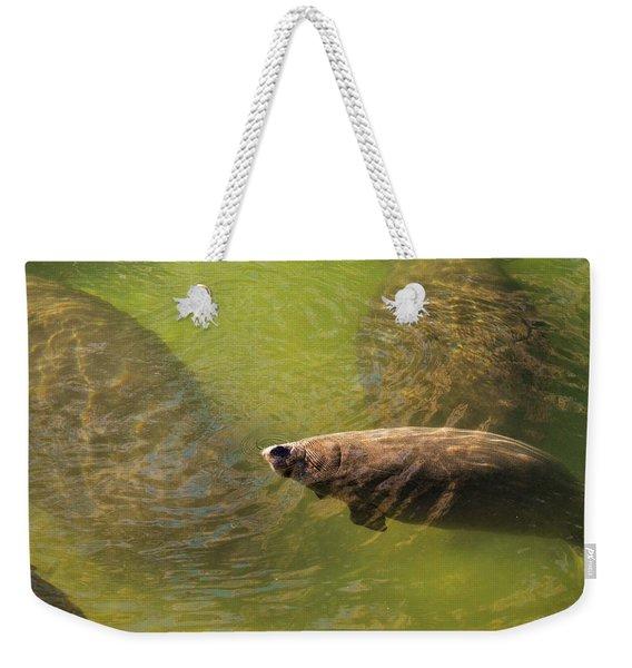 Manatees Weekender Tote Bag