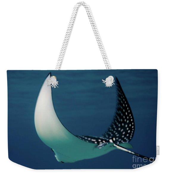 manta ray Manta birostris a1 Weekender Tote Bag