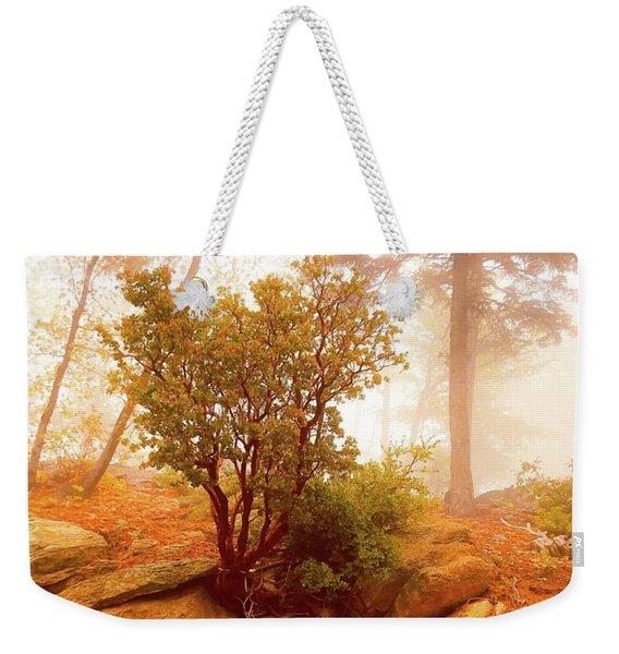 Manzanita In Light Weekender Tote Bag