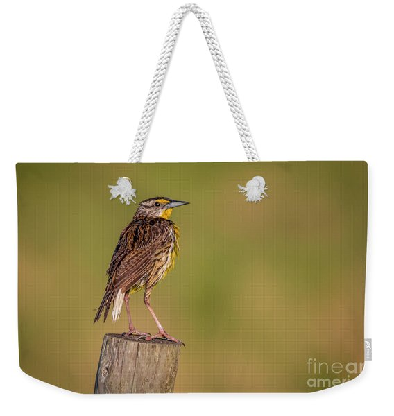Weekender Tote Bag featuring the photograph Meadowlark On Post by Tom Claud