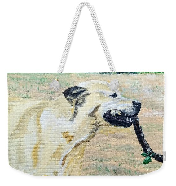 Weekender Tote Bag featuring the painting Mike by Kevin Daly
