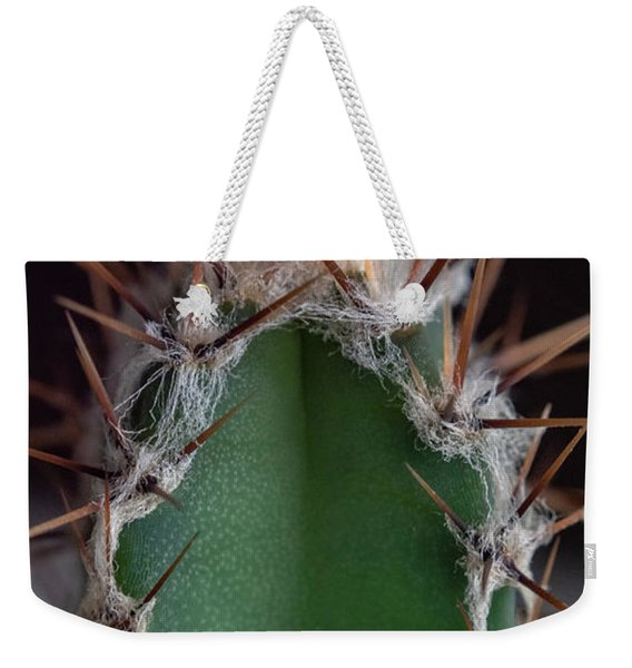 Weekender Tote Bag featuring the photograph Mini Cactus Up Close by Scott Lyons