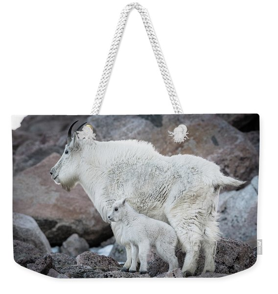 Mom And Baby Mountain Goat Weekender Tote Bag