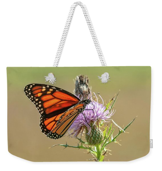 Monarch Butterfly On Thistle 1 Weekender Tote Bag