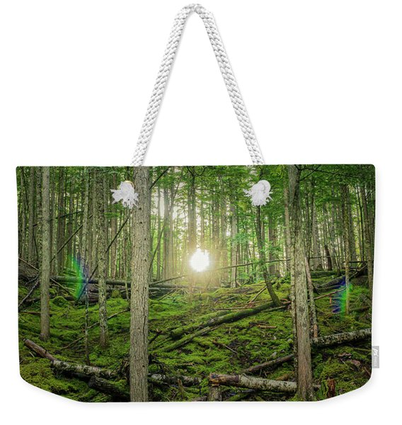 Monashee Forest Sunset With Flare Weekender Tote Bag
