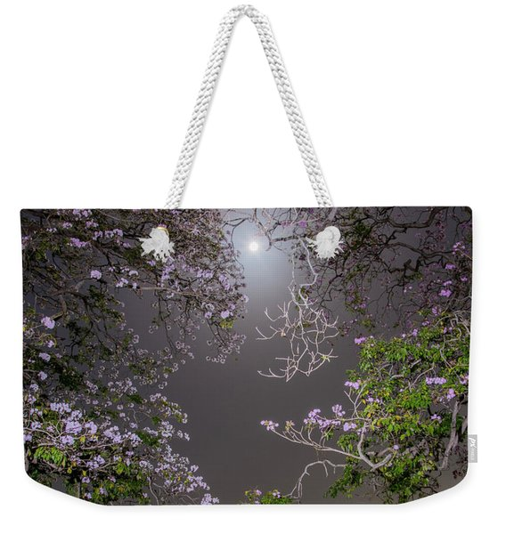 Weekender Tote Bag featuring the photograph Moonlight And Magic by Rachel Lee Young