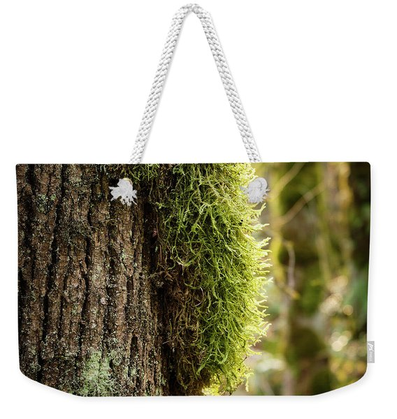 Weekender Tote Bag featuring the photograph Moss On Bark by Whitney Goodey