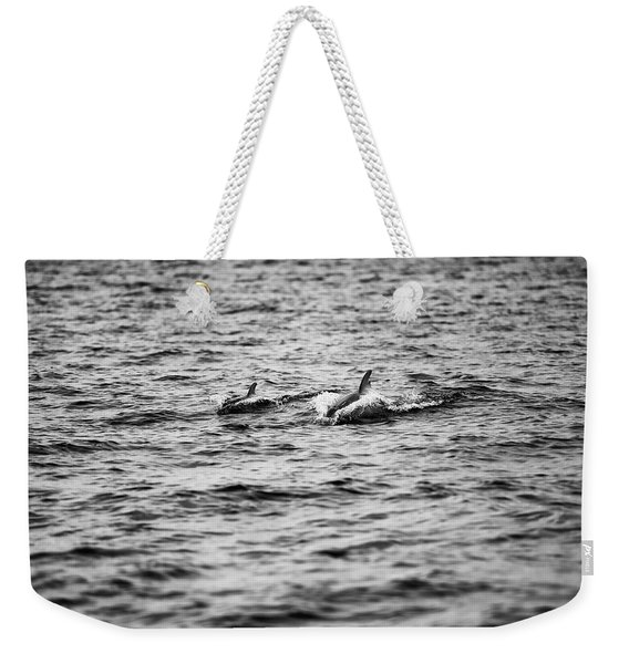 Mother Dolphin And Calf Swimming In Moreton Bay. Black And White Weekender Tote Bag