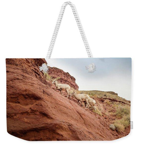 Mountain Goats Weekender Tote Bag